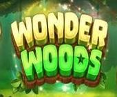 Wonder Woods Logo