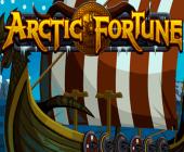 Arctic Fortune Online-Spielautomaten