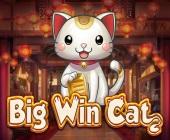 Big Win Cat Online Spielautomat