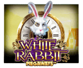 White Rabbit™ Online-Spielautomat